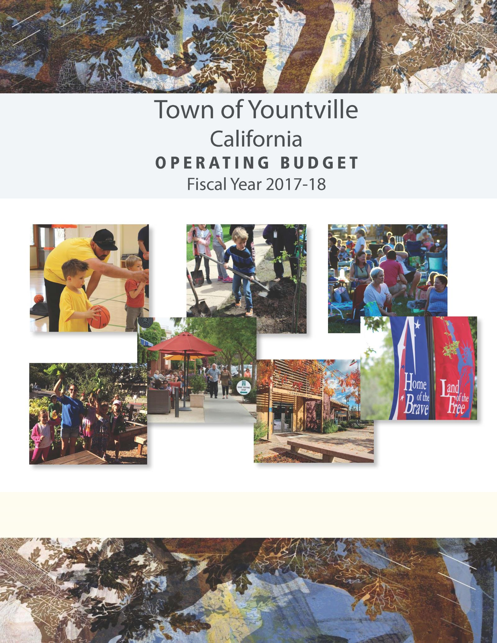 2017-18 Budget Cover page for website