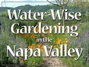 Water-Wise Gardening in the Napa Valley
